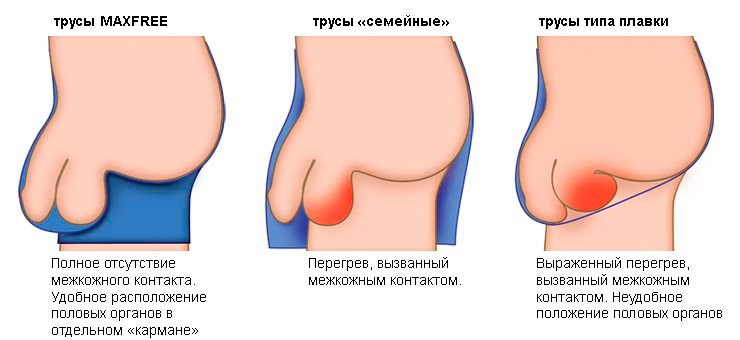akkora, mint a pénisz)