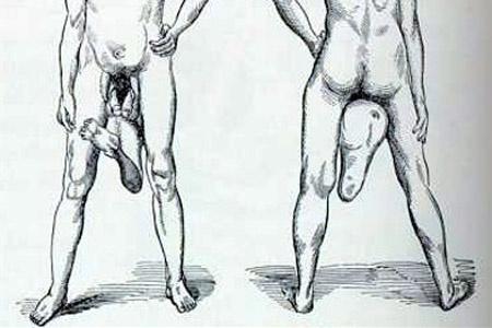 Egy férfinak két pénise van, 7 tény, amit még biztosan nem tudtál a férfi nemi szervről | Well&fit