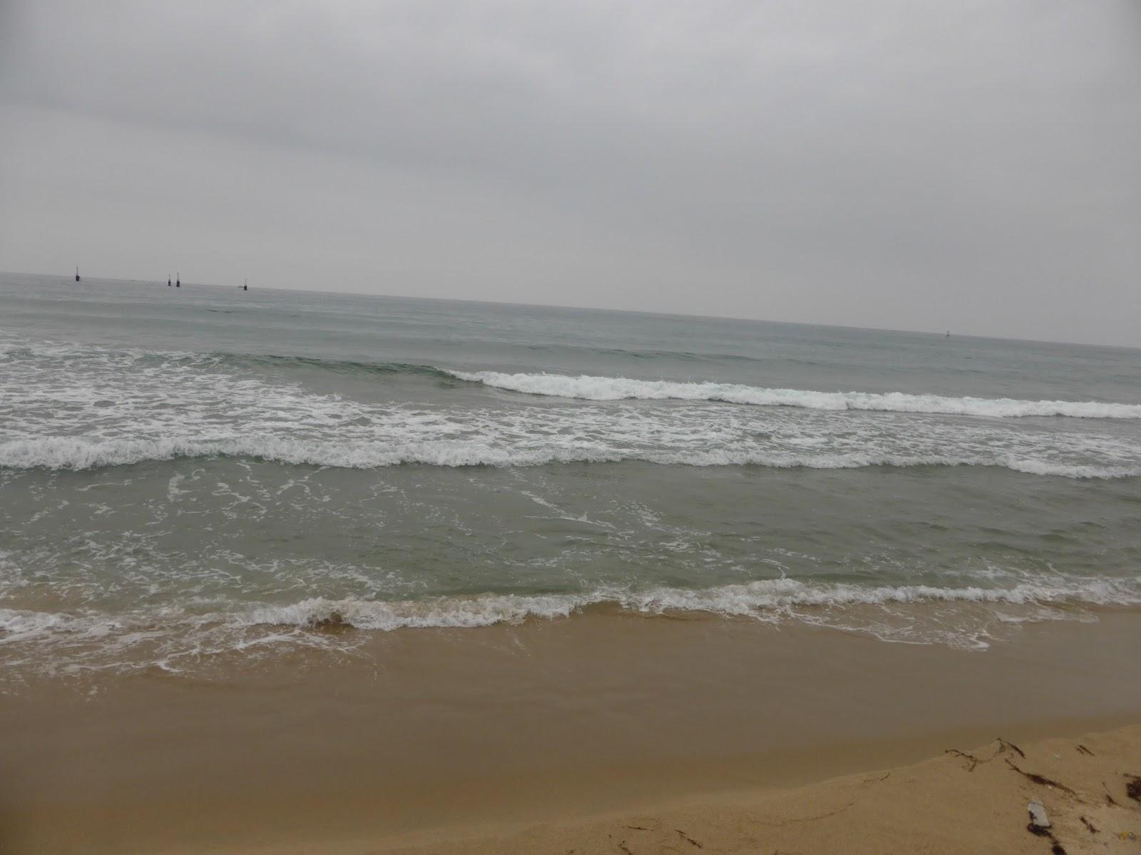felállítani a tengerparton