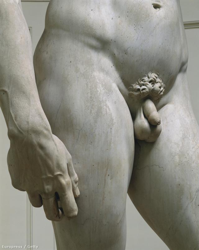 a pénisz méretét