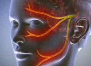 erekció során a fej nem nyílik ki erekció csak stimulációval jelenik meg